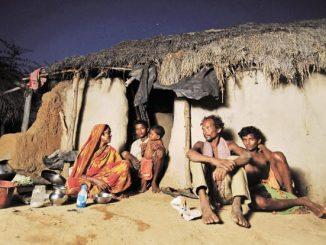 tribals-kQW--621x414@LiveMint