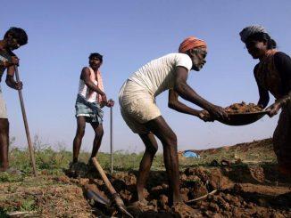 nrega-andhra-pradesh-labour-occupation-satish-photo_ec243142-1c7b-11e7-8dd7-d947b0232760
