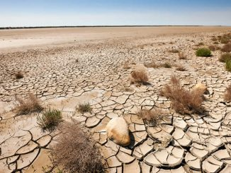 causes-and-effects-of-desertification