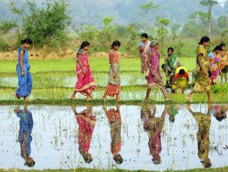 women-agriculture