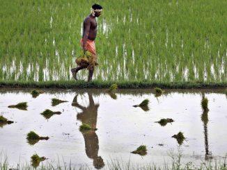 30-farmer-indiaink-superjumbo