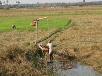 irrigation-india