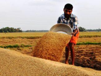 yourstory-odisha-farmer