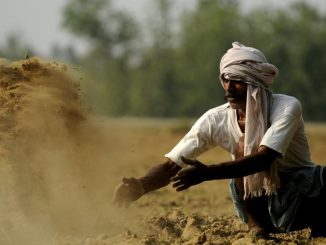 village-barabanki-thursday-lucknow-farming-hindustan-farmer_834e7602-8560-11e7-aa81-8a4dce36eef3