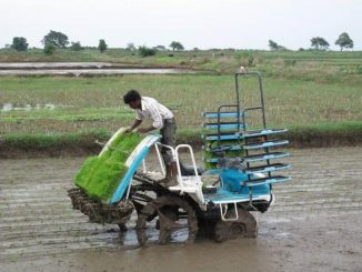 mechanical-transplanter-in-operation-on-farmers-fields-guntur-ap-3_0