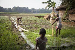 Greenpeace Clean Pumping Challenge in IndiaWettbewerb fuer saubere Wasserpumpen in Indien