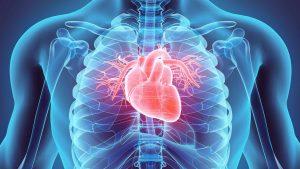 cardiovascular disease in India