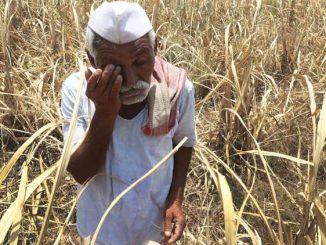 maharashtra-drought-