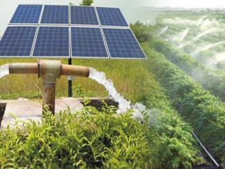 solar-powered-irrigation