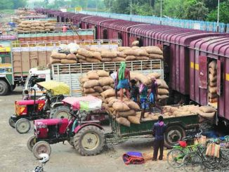agricultural exports from india