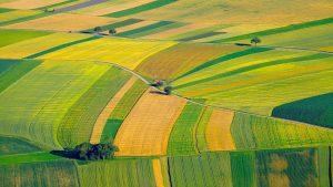 precision_agriculture