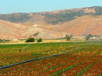 india-lebanon-agri