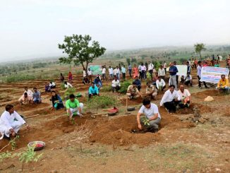1-5m-volunteers-in-india-plant-record-breaking-66-million-trees-in-12-hours-7