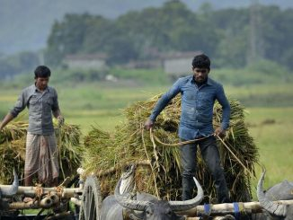 thousands-of-indian-farmers-threaten-suicide-1439571005