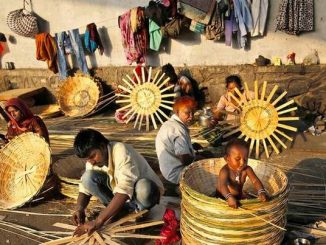 India's Unorganised Sector