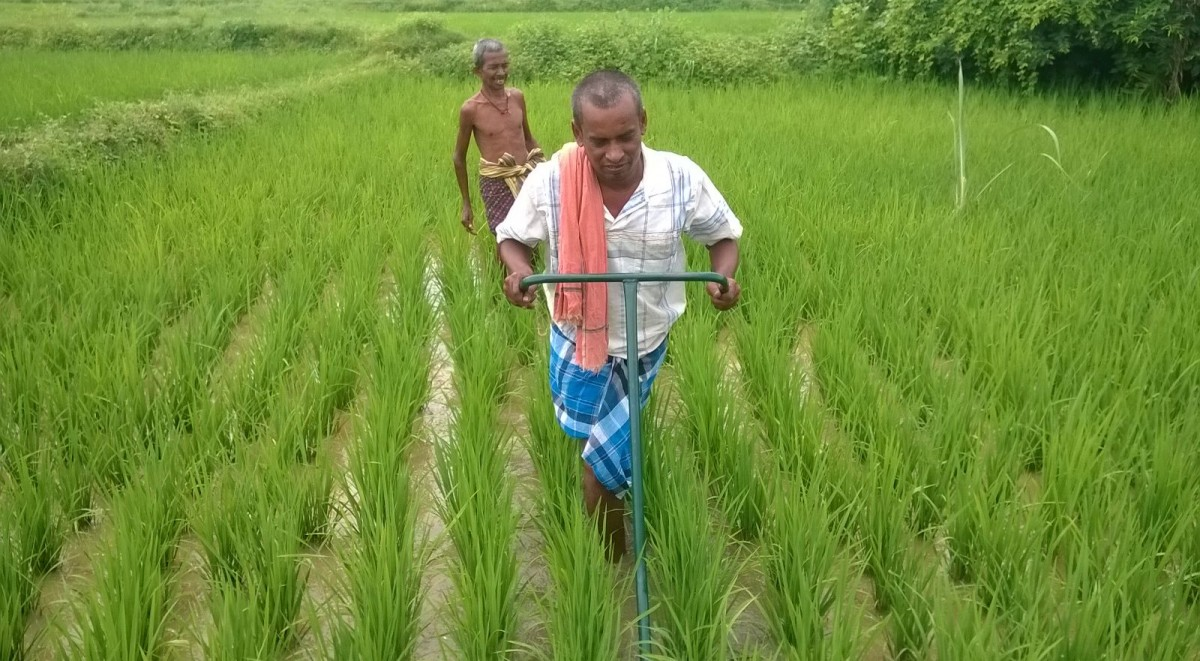 India simply cannot afford to keep supporting agriculture ...
