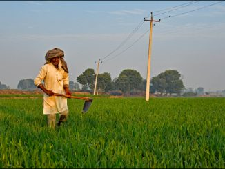 5G tech for smart agriculture in India
